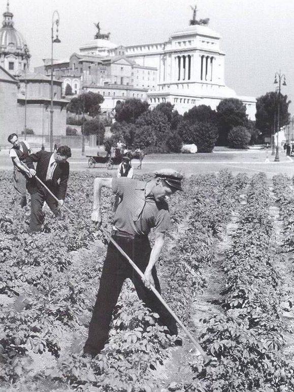 Римляне на городских огородах. 1941 г.