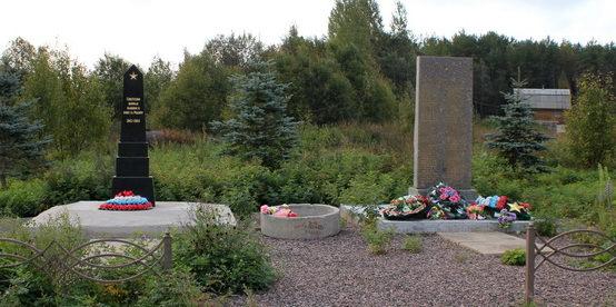 д. Новоандреево Тихвинского р-на. Памятник был установлен в 1970 году на братской могиле, в которой похоронено 145 советских воинов, в т.ч. 73 неизвестных.