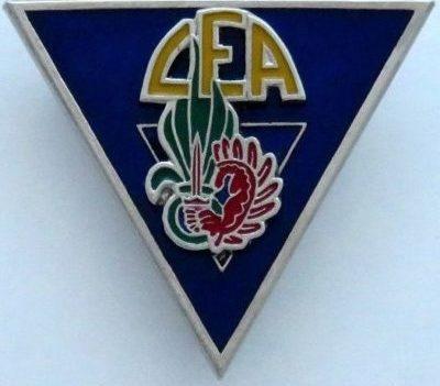 Знак роты огневой поддержки 2-го парашютного полка.