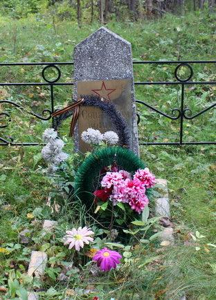 д. Плесо Тихвинского р-на. Братская могила советских воинов.