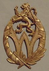 Знак социальной службы Королевских ВС Бельгии.