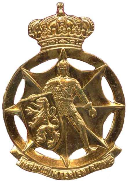 Знак службы гражданской обороны Королевских ВС Бельгии.