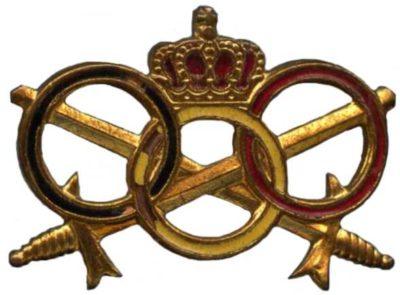 Знак службы физической подготовки для офицеров Королевских ВС Бельгии.