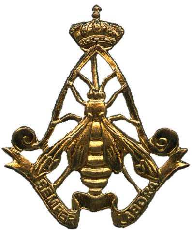 Знак легкой армейской авиации Королевских ВС Бельгии.