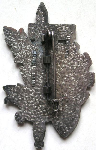 Аверс и реверс знака роты CCS 41-го пехотного полка.