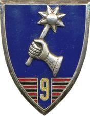 Знак 9-го Африканского егерского полка.
