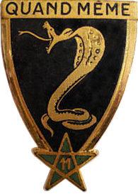 Знак 11-го Африканского егерского полка.