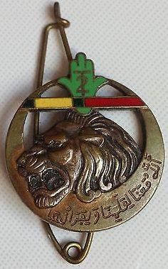 Знак 2-го полка Алжирских стрелков.