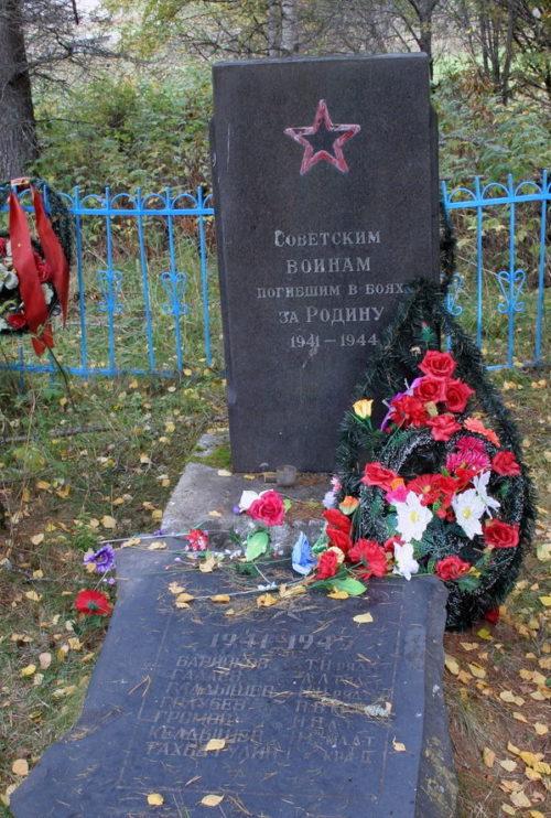 д. Родионово Подпорожского р-на. Памятник на кладбище, установленный на братской могиле, в которой похоронено 7 советских воинов.