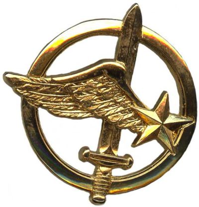 Знак коммандос армейской фронтовой авиации.