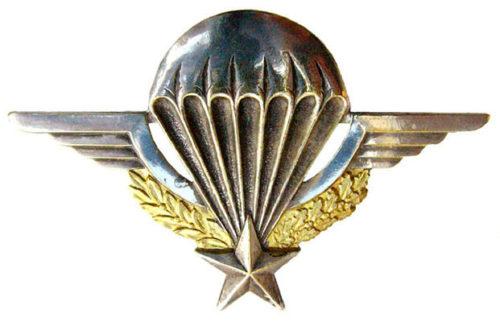 Знак военного парашютиста сухопутных войск.