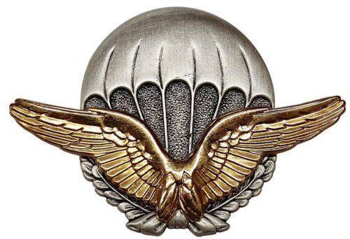 Знак начальной парашютной подготовки в ВВС.