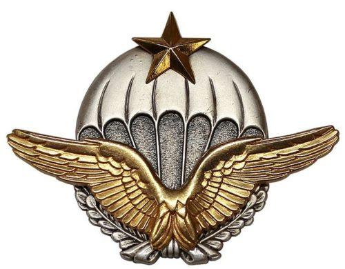 Знак военного парашютиста ВВС.