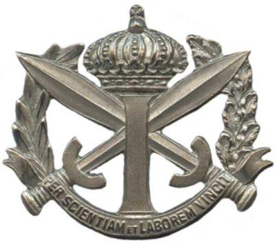 Знак Военной пехотной школы.