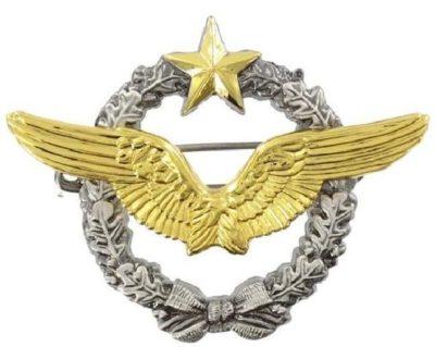 Знак пилота ВВС.