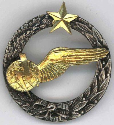 Знак штурмана –радиста ВВС.