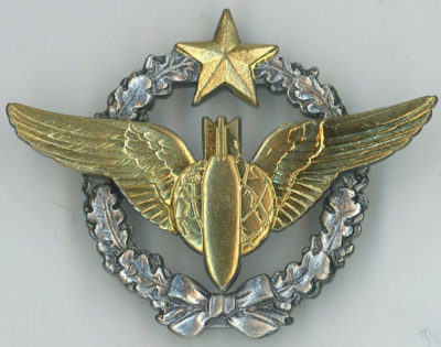 Знак штурмана-бомбера ВВС.