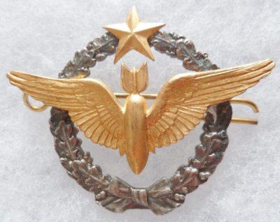 Знак бомбера ВВС.
