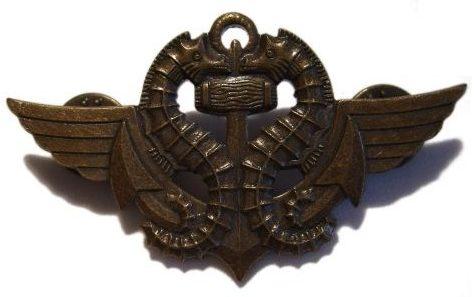 Знак боевого пловца.