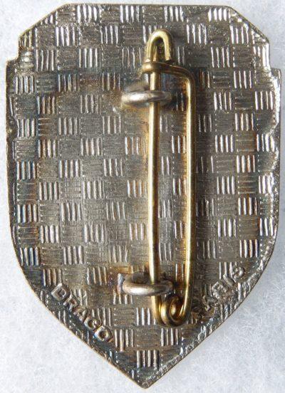 Аверс и реверс знака 107-го пехотного полка.