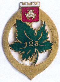 Знак 123-го пехотного полка.