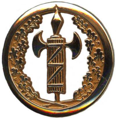 Знак военно-юридической службы.