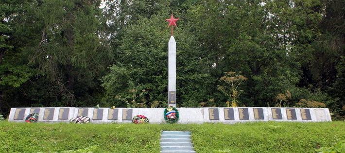 д. Новоселье Сланцевског р-на. Памятник погибшим землякам.