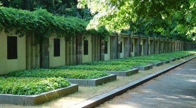Стена памяти и братские могилы.