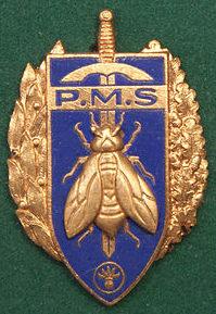 Знаки средних военных училищ для сухопутных войск.