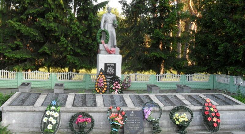 п. Комарин Брагинского р-на. Памятник на братской могиле, погибшим воинам и землякам.