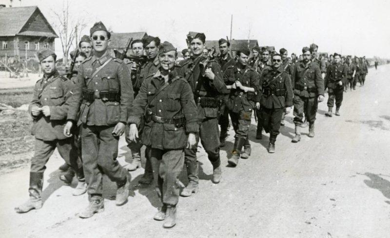 Солдаты на фронте.