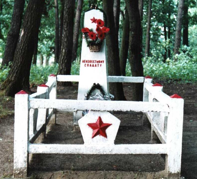 д. Горни Лидского р-на. Памятник, установленный на братской могиле, в которой похоронено 5 неизвестных советских воинов.