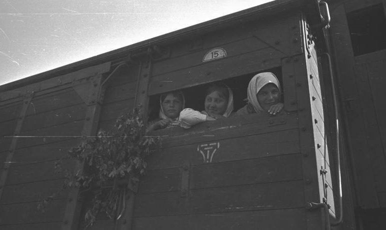Остарбайтеры на пути в Германию. 1943 г. А так было на самом деле.