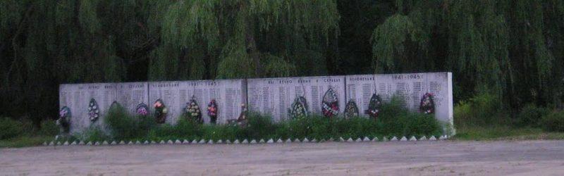 д. Новоселки Петриковского р-на. Мемориал «Погибшим и живым».