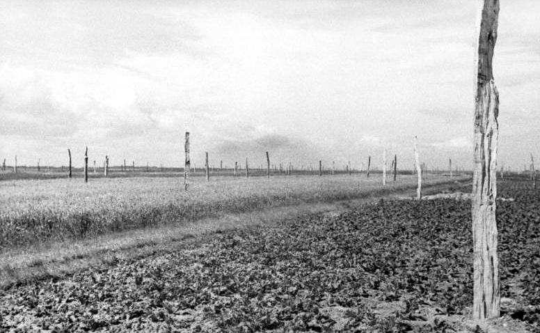 Противодесантная защита побережья «спаржей Роммеля». 1944 г.