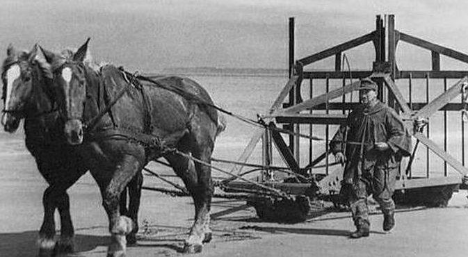 Установка «бельгийских ворот» на пляже. Норвегия. 1944 г.