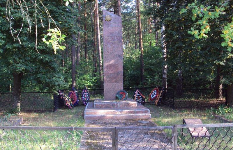п. Кленки Гомельского р-на. Обелиск на братской могиле советских воинов.