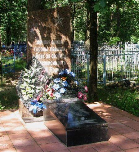 д. Богутичи Ельского р-на. Памятник на братской могиле на кладбище.