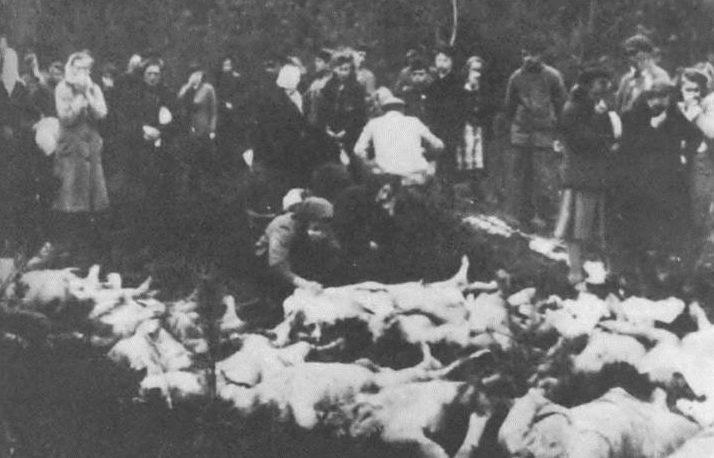 Раскопки могил расстрелянных нацистами латвийцев. Октябрь 1944 г.