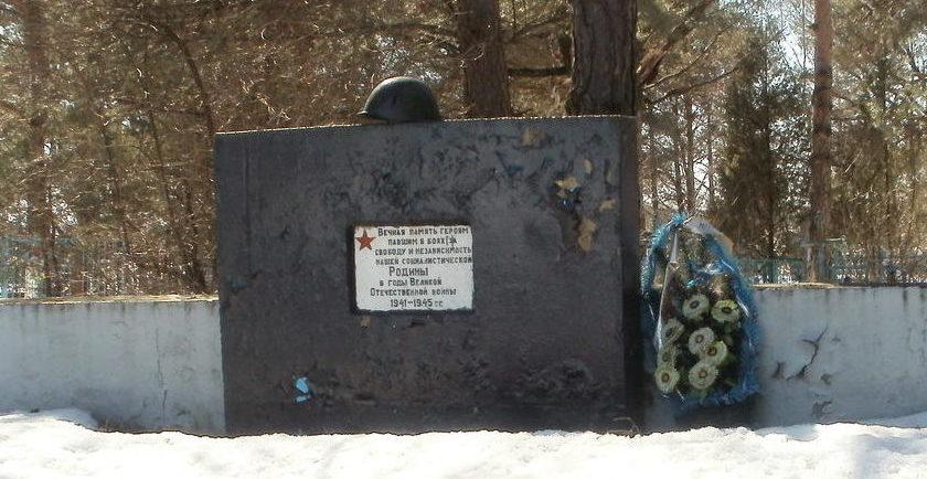 д. Малые Коноплицы Рогачевского р-на. Братская могила на деревенском кладбище.