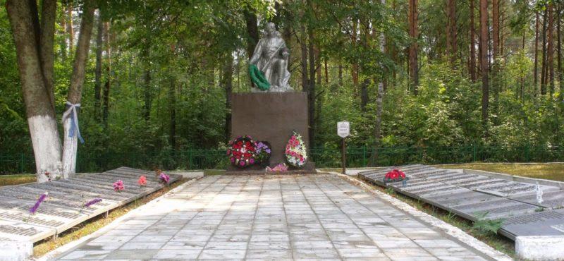д. Великий Бор Светлогорского р-на. Братская могила, в которой похоронены солдаты и офицеры 28-й, 48-й, 65-й армий 1 Белорусского фронта.