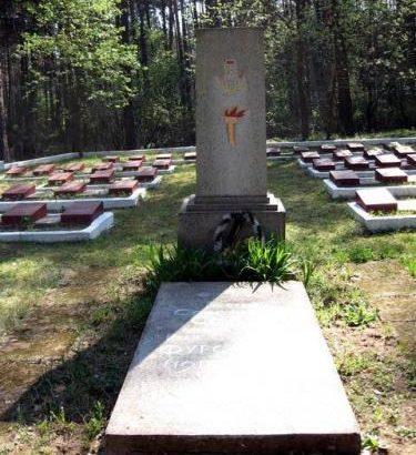 п. Новоельня Дятловского р-на. Памятник на воинском кладбище, установленный у братских могил, в которых похоронено 154 советских воина. Среди них Герой Советского Союза И. С. Фурсенко.
