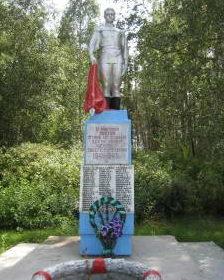 д. Бибики Зельвенского р-на. Памятник землякам, погибшим в годы войны.
