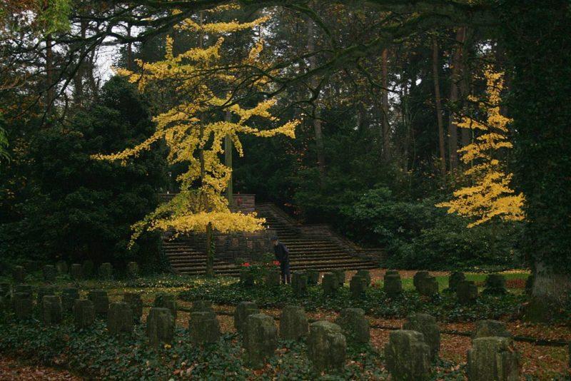 г. Гамбург-Бергедорф. Памятник на кладбище, где захоронены немецкие солдаты, погибшие в обеих мировых войнах, а также жертвы бомбардировок.