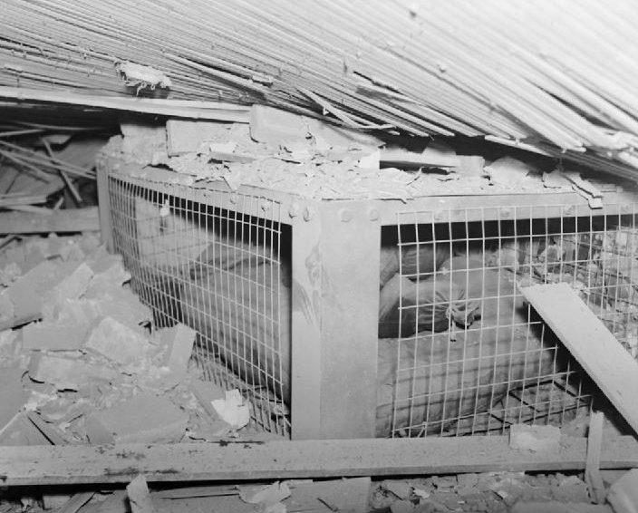Убежище Моррисона в разрушенном доме.
