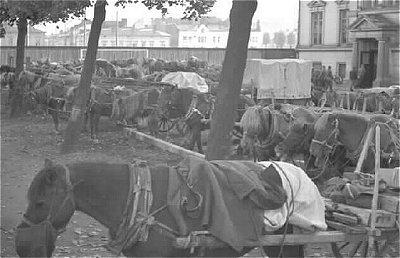 Мобилизация в Финляндии. Октябрь 1939 г.