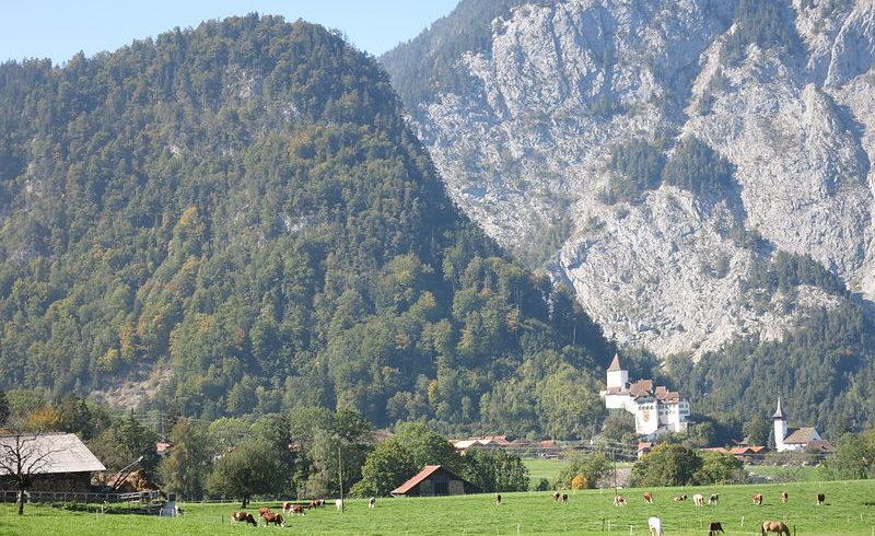 Вид на крепость, закамуфлированную в скале Бургфлух.