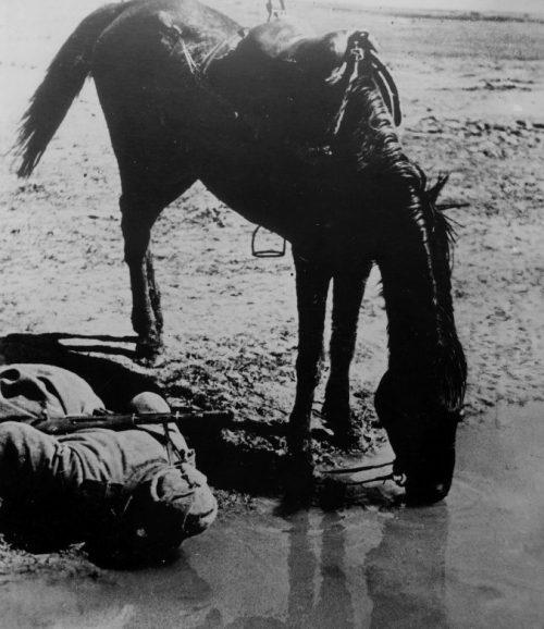 Жажда. Крым. 1942 г.