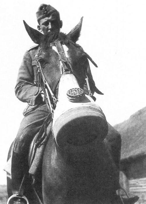 Немецкий кавалерист на лошади в противогазе. Восточный фронт. Июль 1941 г.