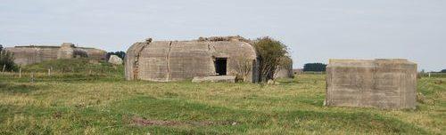 Общий вид сохранившихся сооружений.